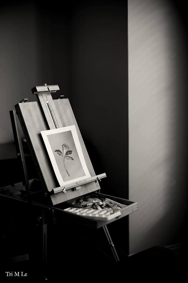 Dr. Le's Art
