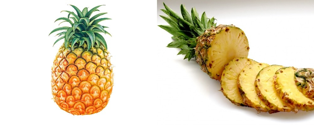 Whole pineapple and pienapple cut into circular slices
